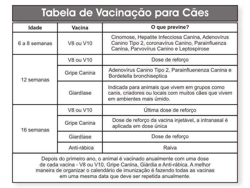 vacinacao_caes