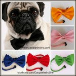 Bows Collage